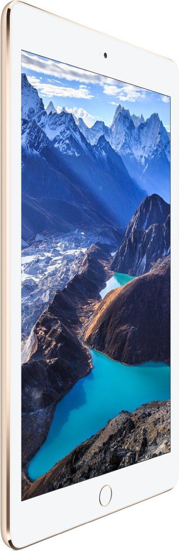 Apple ipad air 2: 16GB